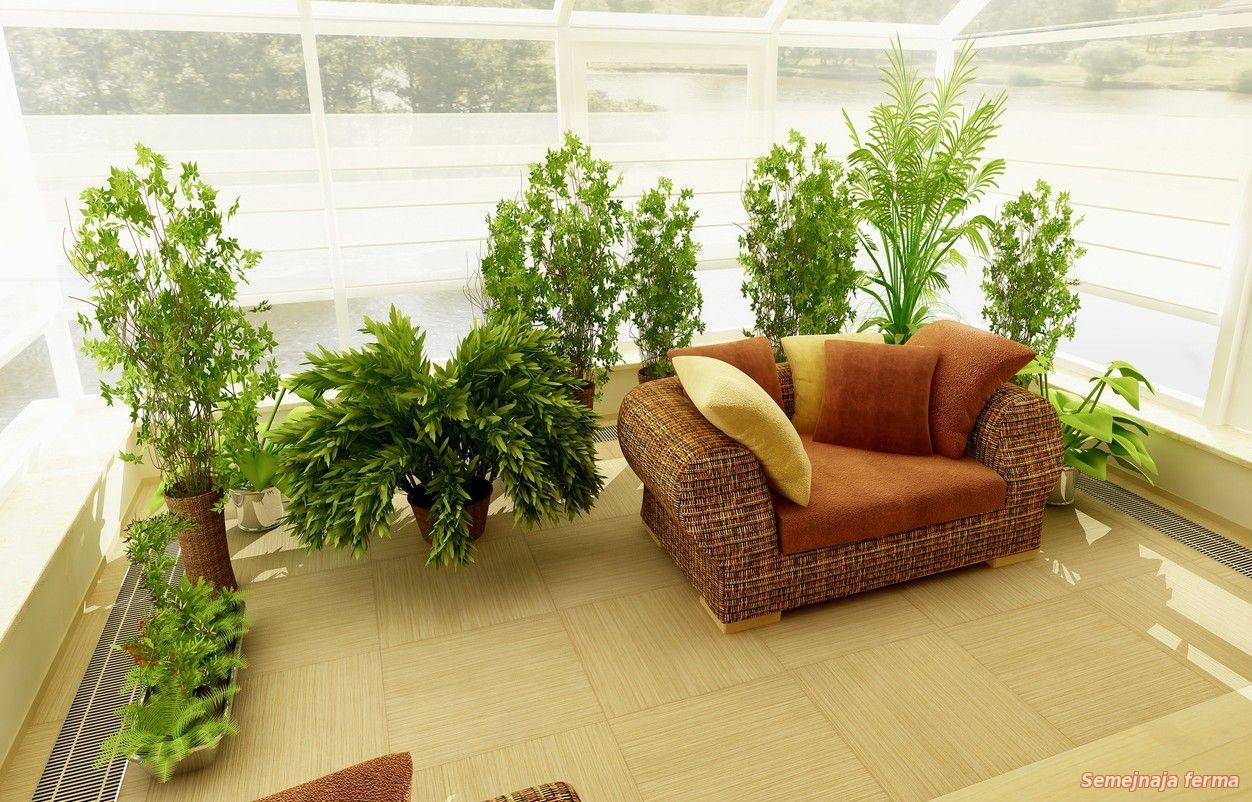Как красиво сделать зимний сад на балконе. - балконные блоки.